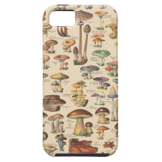 Vintage illustration of mushrooms iPhone SE/5/5s case