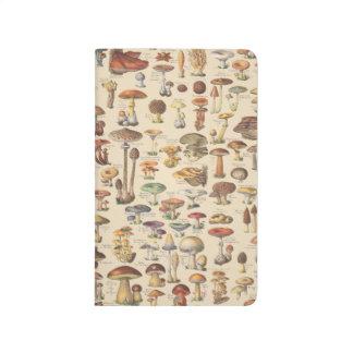 Vintage illustration of mushrooms journal