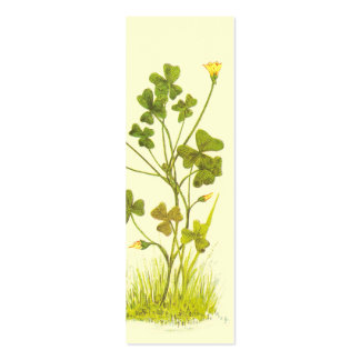 Vintage Illustration of the Yellow Wood-Sorrel Business Cards