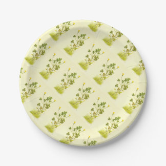 Vintage Illustration of the Yellow Wood Sorrel Paper Plate