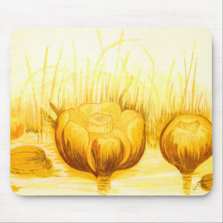 Vintage Illustration of Yellow Pond Lilies Mouse Pad