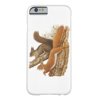 Vintage Illustration, Squirrels In A Tree Barely There iPhone 6 Case