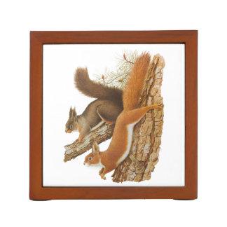 Vintage Illustration, Squirrels In A Tree Desk Organizers