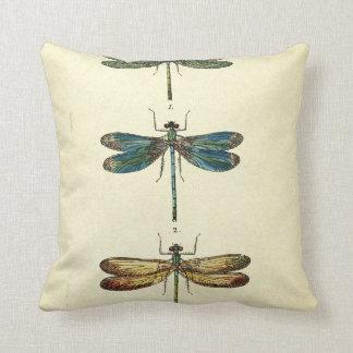 Vintage Illustration, Three Dragonflies Pillow