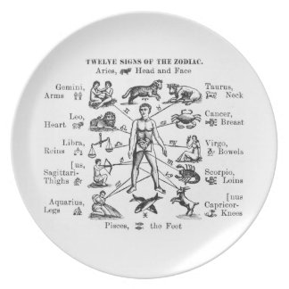 Vintage Illustration Twelve Signs of the Zodiac Plate
