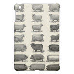 Vintage Image Pigs and Sheep iPad Case