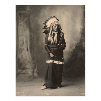 Vintage indian : Eagle Bear, Sioux - Postcard