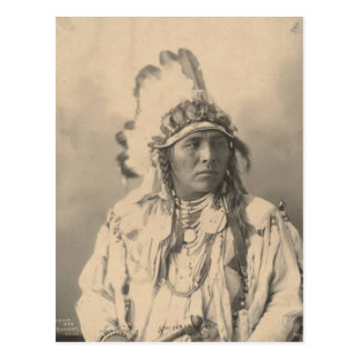 Vintage indian : Spotted Jack Rabbit, Crow - Postcard