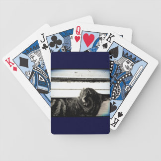 Vintage Indigo Window Nap Bicycle Playing Cards