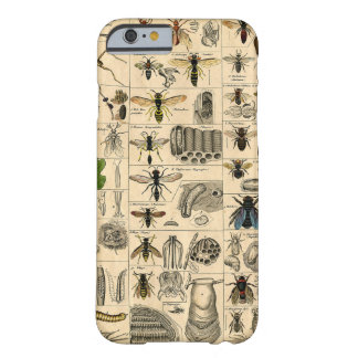 Vintage Insect Bug Chart Phone Case Barely There iPhone 6 Case