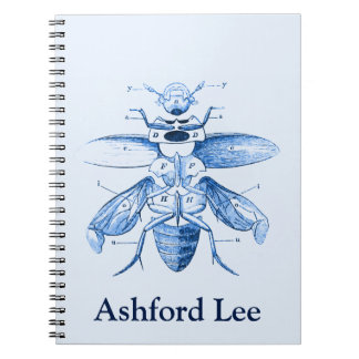 Vintage Insect Image | Beetles | Blue Notebook