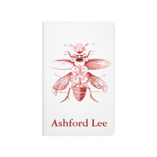 Vintage Insect Image | Beetles | Red Journal