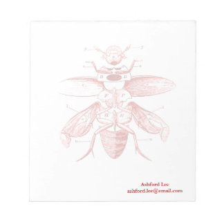 Vintage Insect Image | Beetles | Red Notepad