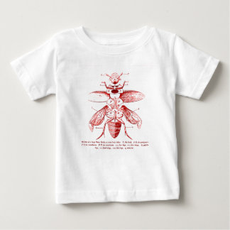 Vintage Insect Image | Beetles | Red Tee Shirts
