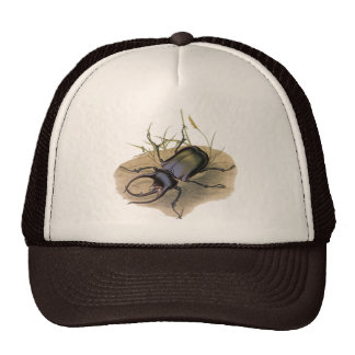 Vintage Insects, Bugs, Rhino Rhinoceros Beetle Trucker Hats