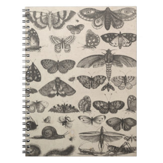 Vintage Insects Entomology Lepidoptera Field Notes Spiral Notebook