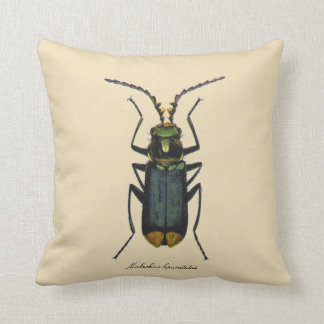 Vintage Insects Entomology Malachite Beetle Rever. Throw Pillow