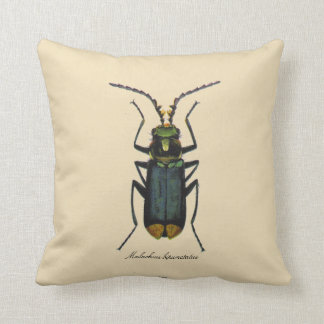Vintage Insects Entomology Reversible Cotton Throw Pillow
