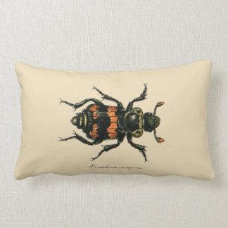 Vintage Insects Entomology Reversible Lumbar Throw Pillow