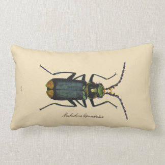 Vintage Insects Entomology Reversible Polyester Lumbar Pillow