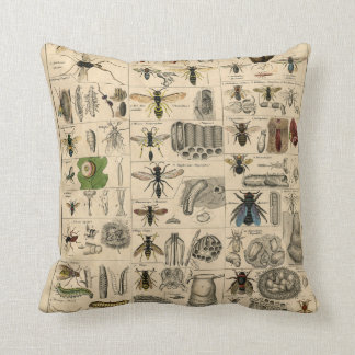 Vintage Insects Entomology Taxonomy Polyester Throw Pillow