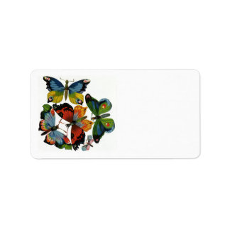 Vintage Insects or Bugs, Beautiful Butterflies Label