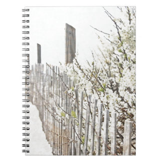 Vintage Inspired Cape Cod White Flowers Sand Fence Note Books