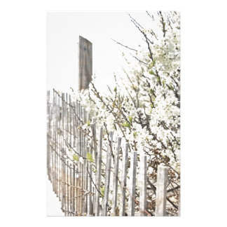 Vintage Inspired Cape Cod White Flowers Sand Fence Stationery