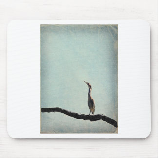 Vintage Inspired Green Heron on Pale Blue Mouse Pad