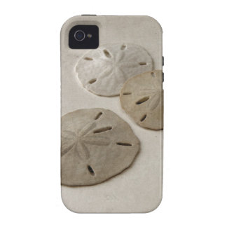 Vintage Inspired Sand Dollars iPhone 4 Covers
