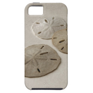 Vintage Inspired Sand Dollars iPhone 5 Cover