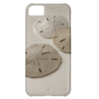 Vintage Inspired Sand Dollars Cover For iPhone 5C