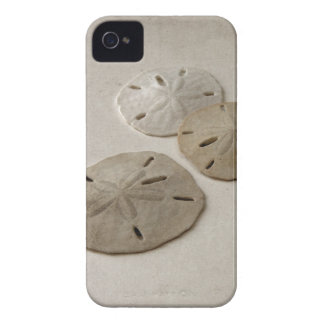 Vintage Inspired Sand Dollars iPhone 4 Case-Mate Cases