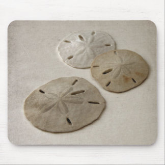 Vintage Inspired Sand Dollars Mouse Pad