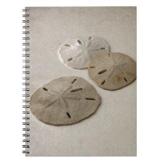 Vintage Inspired Sand Dollars Spiral Note Books
