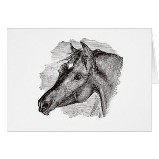 Vintage Intelligent Horse Template Greeting Card