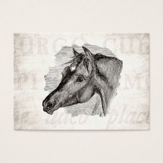 Vintage Intelligent Horse Template w Antique Text Business Card