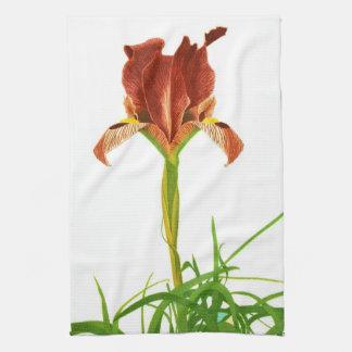 Vintage Iris Flag Flower Illustration Print Hand Towels