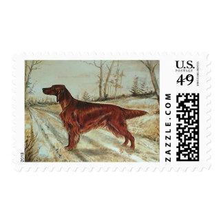 Vintage Irish Setter Dog Art Stamps