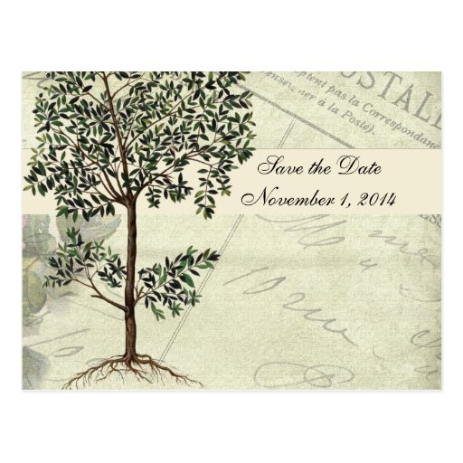 Vintage Italian Myrtle Save the Date Postcard