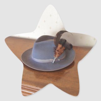 Vintage Italian Trilby With Feathers Star Sticker