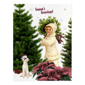 Vintage Jack Russell and Pink Poinsettias Postcard