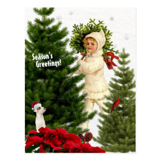 Vintage Jack Russell and Red Poinsettias Postcard
