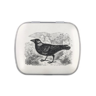 Vintage Jackdaw Crow Bird Personalized Birds Crows Jelly Belly Candy Tin