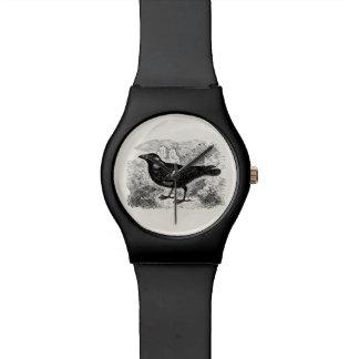 Vintage Jackdaw Crow Bird Personalized Birds Crows Wristwatch