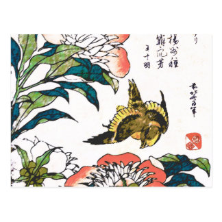 Vintage Japanese drawing, Peonies and Sparrow Postcard