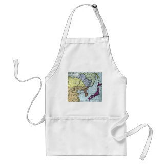 Vintage Japanese Hand Tinted Map 日本 Adult Apron