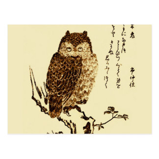 Vintage Japanese Ink Sketch of an Owl Postcard