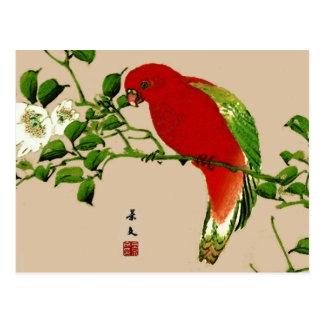 Vintage Japanese Painting of a Parrot, Red & Green Postcard