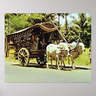 Vintage Java, Gerobag, Bullock cart, central Java Poster